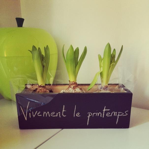 DIY tutoriel chalkboard plant